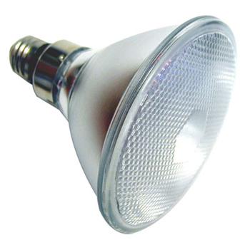 LED PAR 38 LAMP