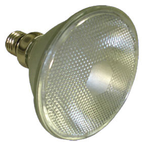Eco-LED Par38-120 LED lamp