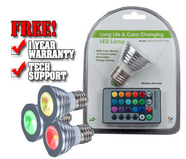 LED Light with Remote