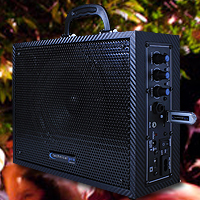 Wasp300 Black Portable PA System